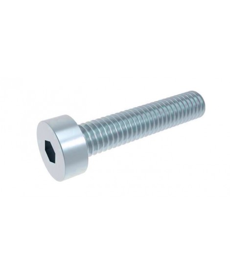 Zylinderschrauben mit Innensechskant DIN 6912 8.8 verzinkt
