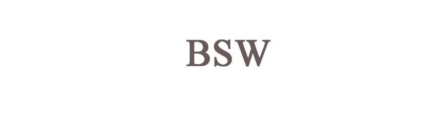 BSW (britisch Grobgewinde)